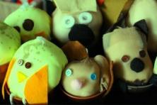 Cress head bunnies ad chicks