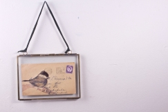 Great Tit -drawing on vintage envelope.
