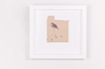Little Bird- drawing on old envelope