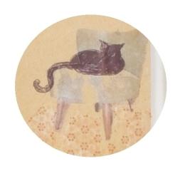cat small